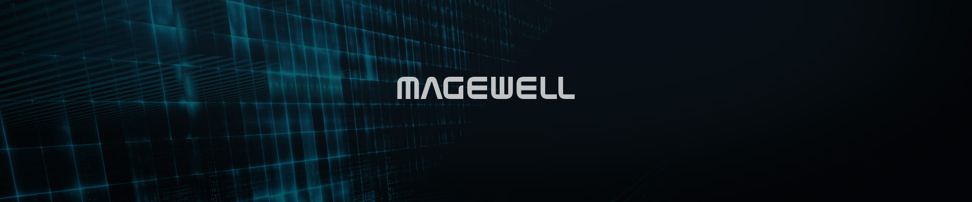 img-magewell-acc-dvi-to-vga-connector-x1